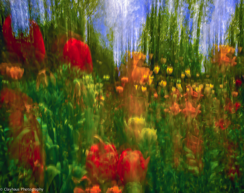 Impressions of Monet's Gardens